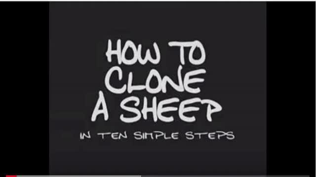 How to Clone Sheep
